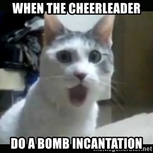 Surprised Cat - When the cheerleader do a bomb incantation