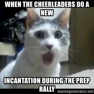 Surprised Cat - When the cheerleaders do a new incantation during the prep rally