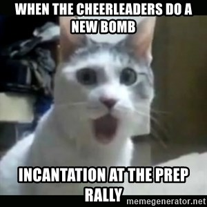 Surprised Cat - When the cheerleaders do a new bomb incantation at the prep rally