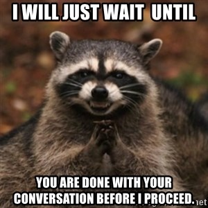 evil raccoon - I will just wait  until you are done with your conversation before I proceed.
