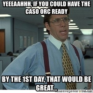 Yeah If You Could Just - Yeeeaahhh, If you could have the CASO ORC ready by the 1ST day, that would be great...