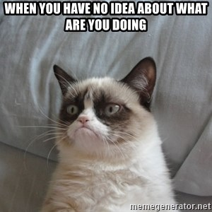 Grumpy cat good - When you have no idea about what are you doing
