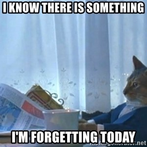 newspaper cat realization - i know there is something i'm forgetting today