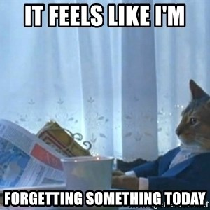 newspaper cat realization - it feels like i'm forgetting something today