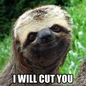 Sarcastic Sloth - I will cut you