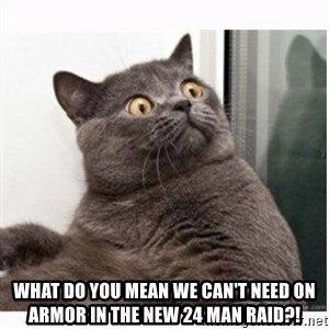 Conspiracy cat - what do you mean we can't need on armor in the new 24 man raid?!