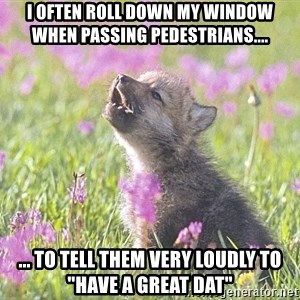"Baby Insanity Wolf - I often roll down my window when passing pedestrians.... ... to tell them very loudly to ""HAVE A GREAT DAT"""