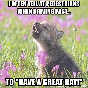 "Baby Insanity Wolf - I often yell at pedestrians when driving past... To ""HAVE A GREAT DAY!"""