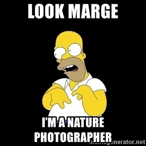 look-marge - Look Marge I'm a Nature photographer