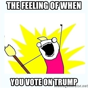 All the things - The feeling of when  You vote on trump