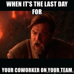 """Obi Wan Kenobi """"You were my brother!"""" - when it's the last day for your coworker on your team"""