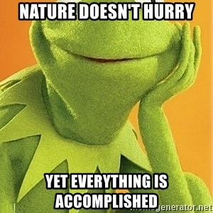 Kermit the frog - Nature doesn't hurry Yet everything is accomplished