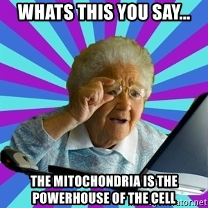 old lady - Whats this you say... the mitochondria is the powerhouse of the cell