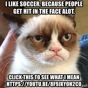 Grumpy Cat 2 - i like soccer, because people get hit in the face alot. click this to see what i mean https://youtu.be/8F9jXYOH2c0
