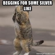 Begging Cat - begging for some silver like
