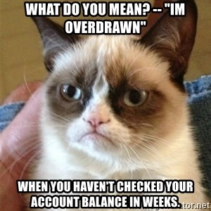 """Grumpy Cat  - What do you mean? -- """"Im overdrawn"""" When you haven't checked your account balance in weeks."""
