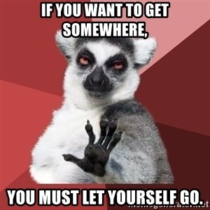 Chill Out Lemur - If you want to get somewhere, you must let yourself go.
