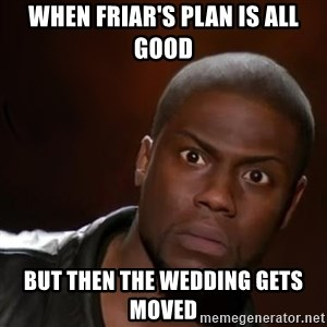 kevin hart nigga - When Friar's plan is all good BUT THEN THE WEDDING GETS MOVED