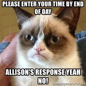 Grumpy Cat  - Please Enter Your Time By End of Day Allison's Response Yeah NO!