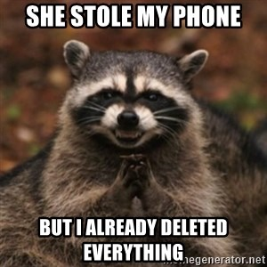 evil raccoon - She stole my phone  but i already deleted everything