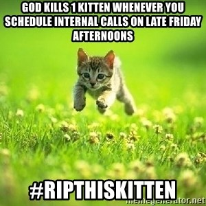 God Kills A Kitten - God kills 1 kitten whenever you schedule Internal calls on Late Friday afternoons #ripthiskitten