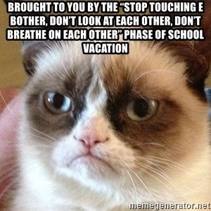 """Angry Cat Meme - Brought to you by the """"stop touching e bother, don't look at each other, don't breathe on each other"""" phase of school vacation"""