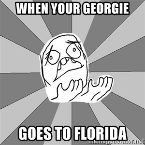 Whyyy??? - When Your georgie goes to florida