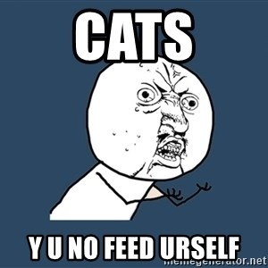 Y U No - CATS Y U NO FEED URSELF