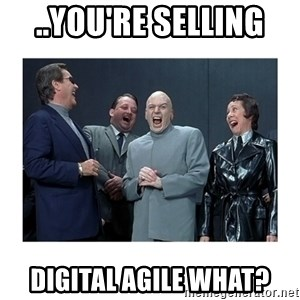 Dr. Evil Laughing - ..you're selling  Digital Agile what?