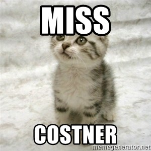 Can haz cat - miss costner