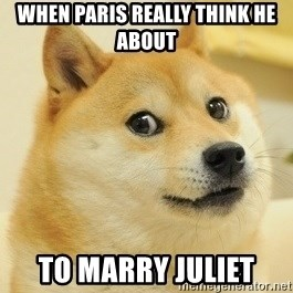 Dogeeeee - when paris really think he about to marry juliet