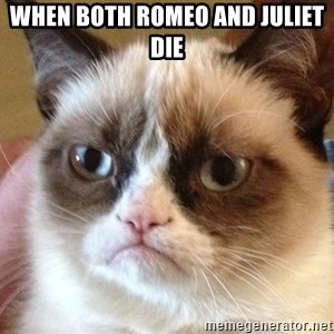 Angry Cat Meme - when both romeo and juliet die