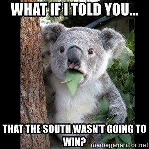 Koala can't believe it - What if I told you... That the south wasn't going to win?