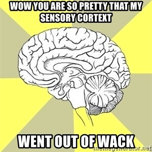 Traitor Brain - WOW you are so pretty that my sensory cortext went out of wack