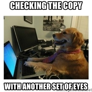 No Computer Idea Dog - checking the copy with another set of eyes