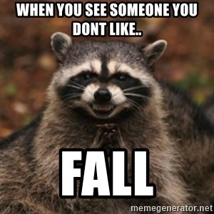 evil raccoon - when you see someone you dont like.. fall