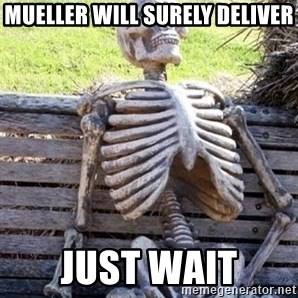 Waiting For Op - Mueller will surely deliver just wait