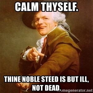 Joseph Ducreux - Calm Thyself. Thine noble steed is but ill, not dead.