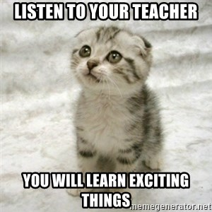 Can haz cat - Listen to your teacher you will learn exciting things