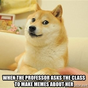so doge - WHEN THE PROFESSOR ASKS THE CLASS TO MAKE MEMES ABOUT HER