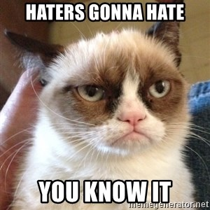Grumpy Cat 2 - haters gonna hate you know it