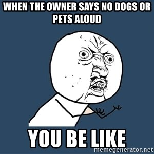 Y U No - When the owner says no dogs or pets aloud you be like