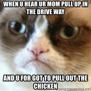 angry cat asshole - when u hear ur mom pull up in the drive way  and u for got to pull out the chicken