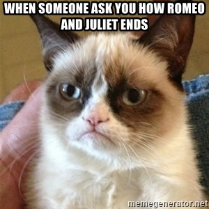 Grumpy Cat  - When someone ask you how Romeo and Juliet ends