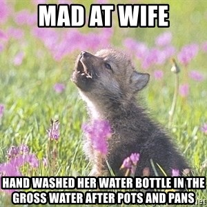 Baby Insanity Wolf - MAD AT WIFE HAND WASHED HER WATER BOTTLE IN THE GROSS WATER AFTER POTS AND PANS