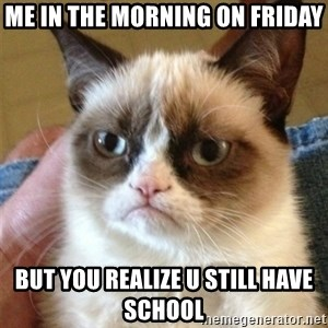 Grumpy Cat  - Me in the morning on friday but you realize u still have school