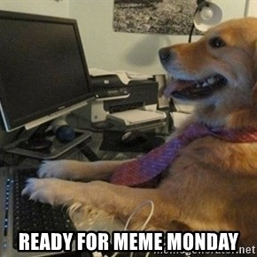 I have no idea what I'm doing - Dog with Tie - ready for meme Monday