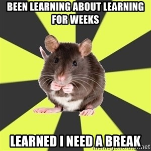 Survivor Rat - Been learning about learning for weeks Learned I need a break