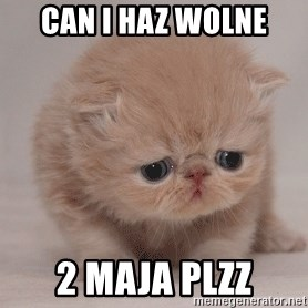 Super Sad Cat - Can i haz wolne 2 maja plzz