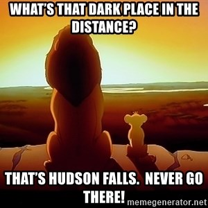 simba mufasa - What's that dark place in the distance? That's Hudson Falls.  Never go there!